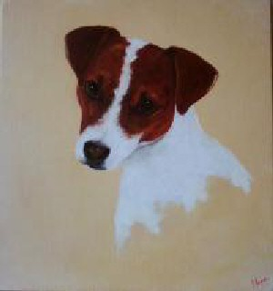 Jack Russell  - Pet Portraits from photographs
