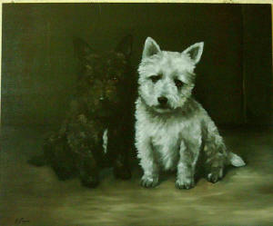 Scotties - Pet Portraits from photographs