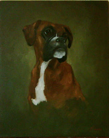 Boxer - Pet Portraits from photographs