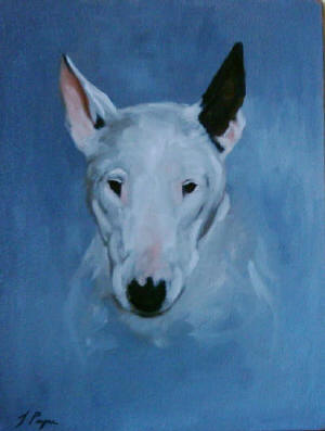Bull Terrier - Pet Portraits from photographs