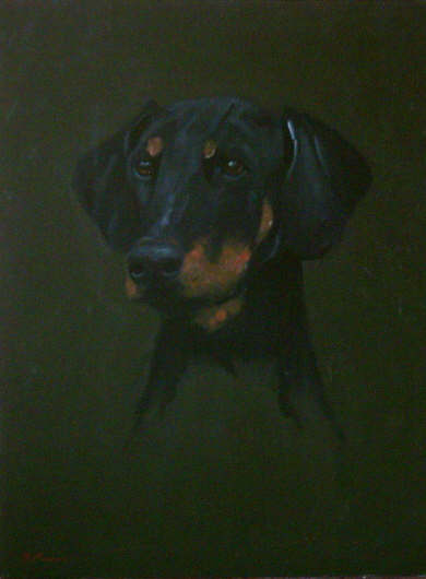 Dobermann - Pet Portraits from photographs