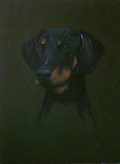 Dobermann - Pet Portraits from photographs