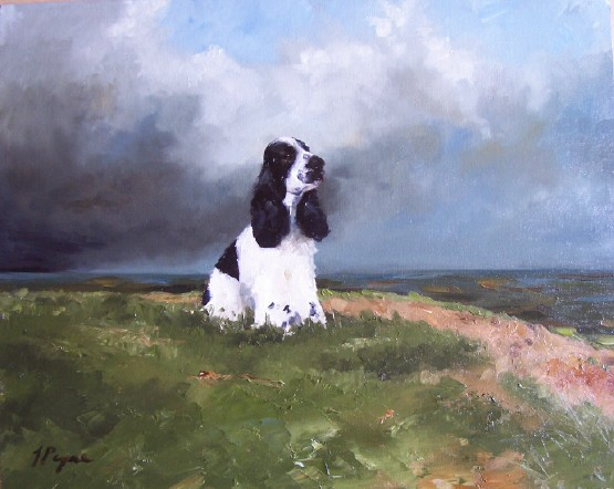 Oil Painting of Clumber Spaniel