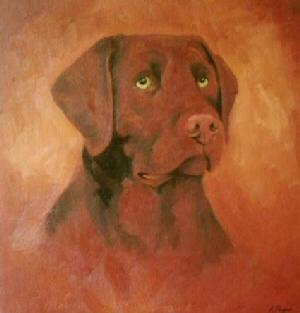 Pet Portraits Dog - Labrador