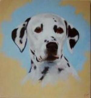 Pet Portraits Dog - Dalmation