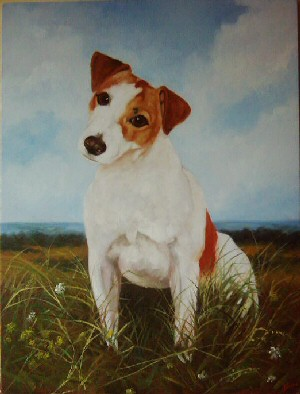 Pet Portraits Dog - Jack Russell