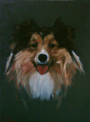 Collie - Pet Portraits from photographs