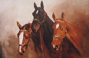 equestrian-portrait-Horses