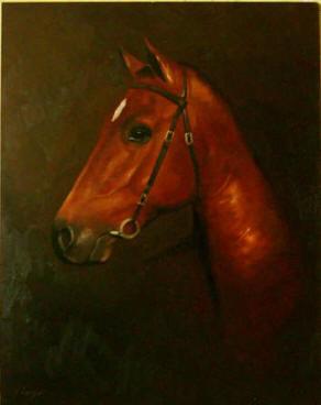 equestrian-portrait-horse-portrait-03